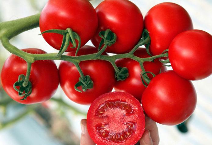 Tomate samen Flajok aus Russland Томат Флажок 0,2г семена | eBay | 476x695
