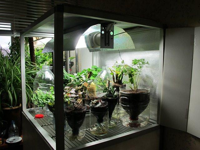 Гроубокс своими руками конопля купить семена конопляные почтой наложенным