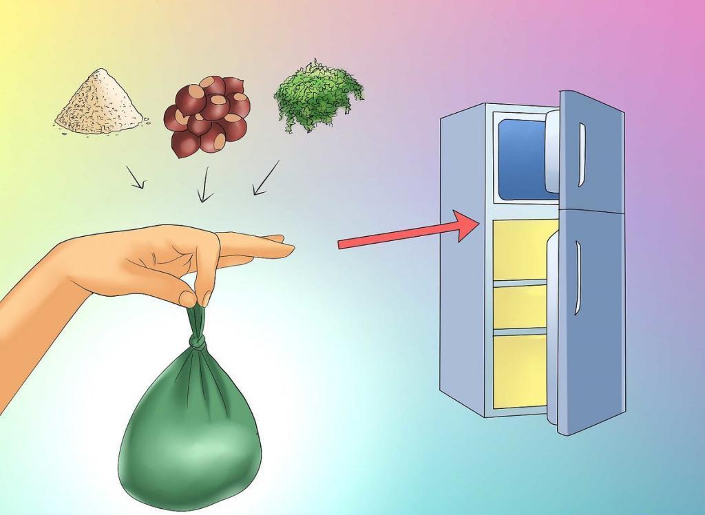 Как подготовить орехи каштана к посадке