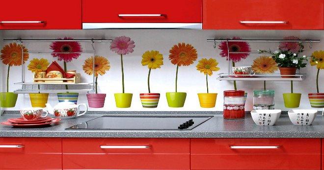Пластиковый фартук для кухни - интересные идеи для самого бюджетного варианта декора
